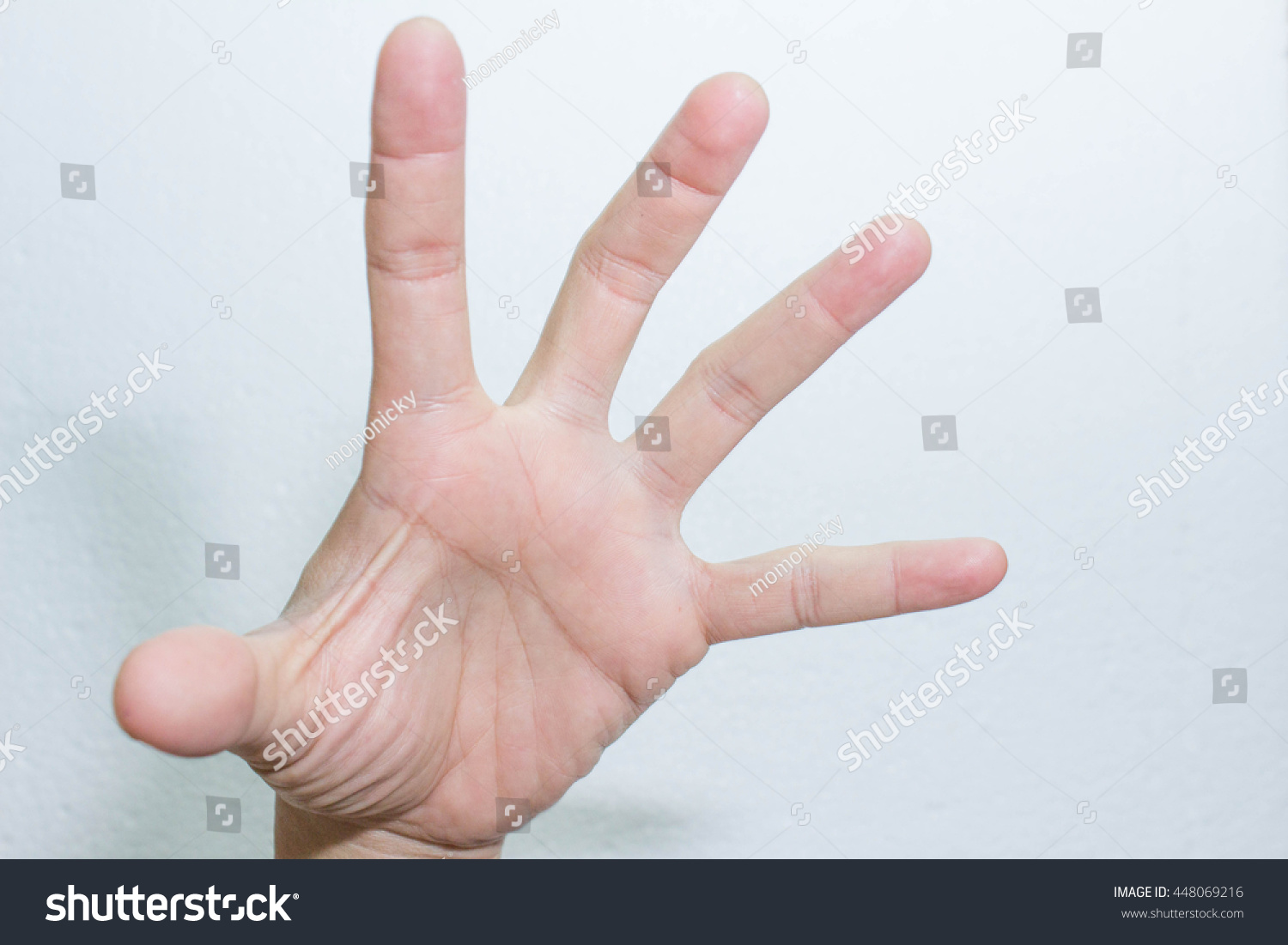 Hand Hand For Meaning Symbol Of Hands Ez Canvas