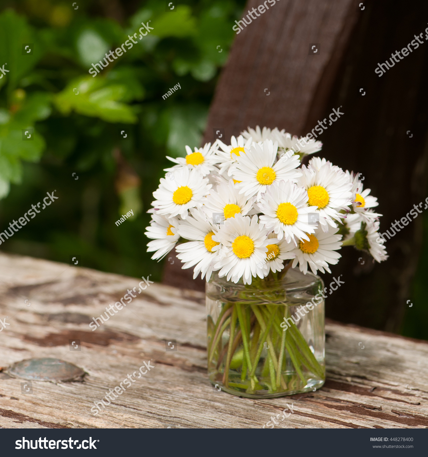Bunch daisies glass vase on wooden stock photo 448278400 bunch of daisies in glass vase on wooden board decoration with wild flowers meadow reviewsmspy