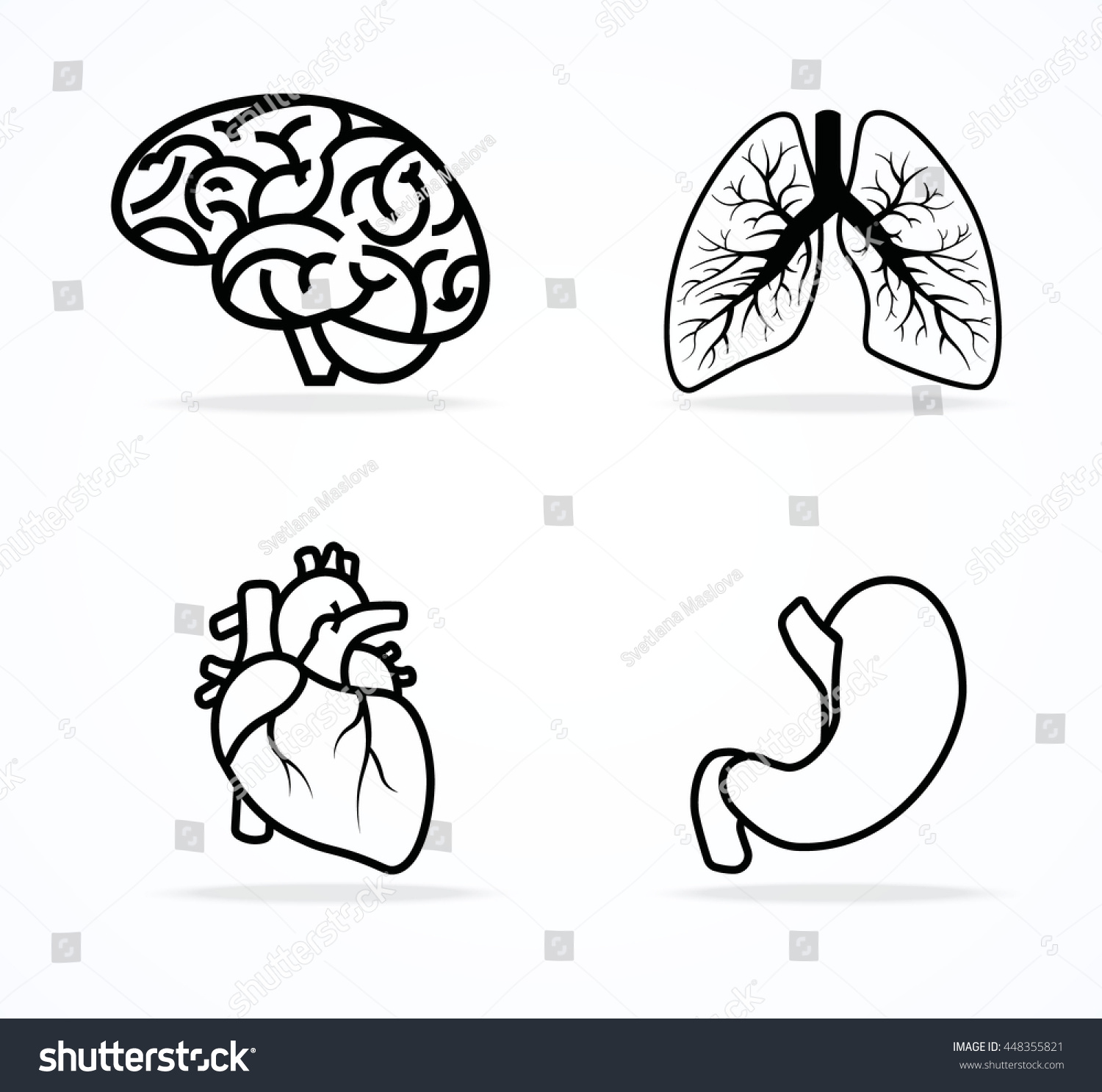 The human brain coloring book diamond - Brain Bronchi Heart And Stomach Icon Vector Isolated On White Background Line Art