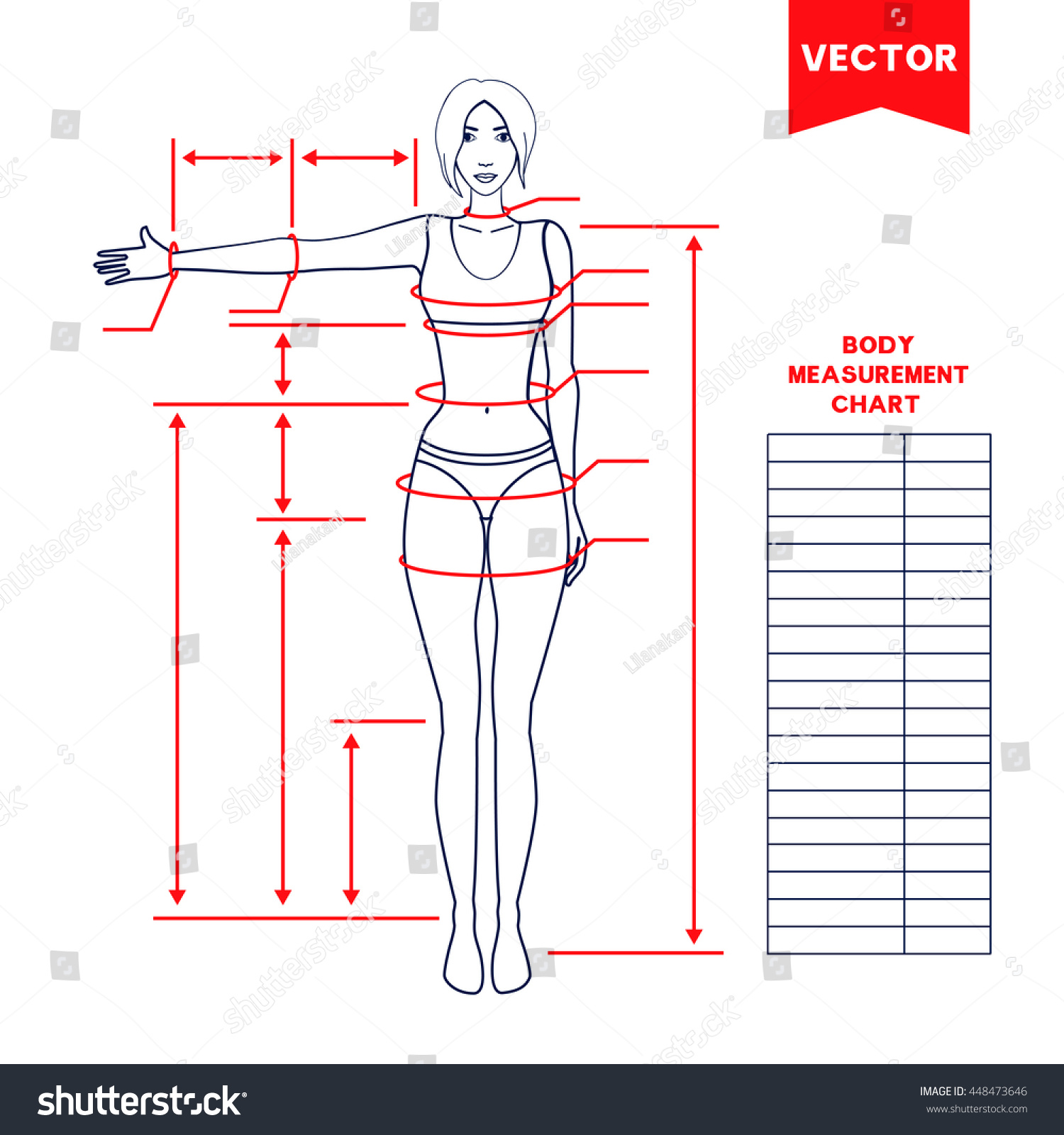 body measurement chart for men