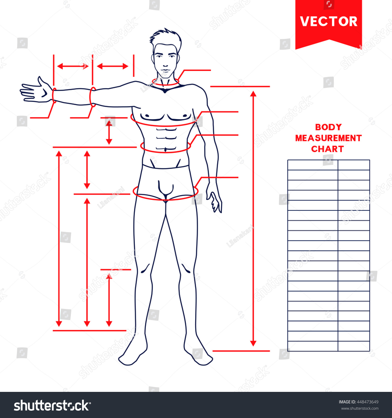Male Body Measurement Chart Scheme For Human Sewing Clothes Dieting