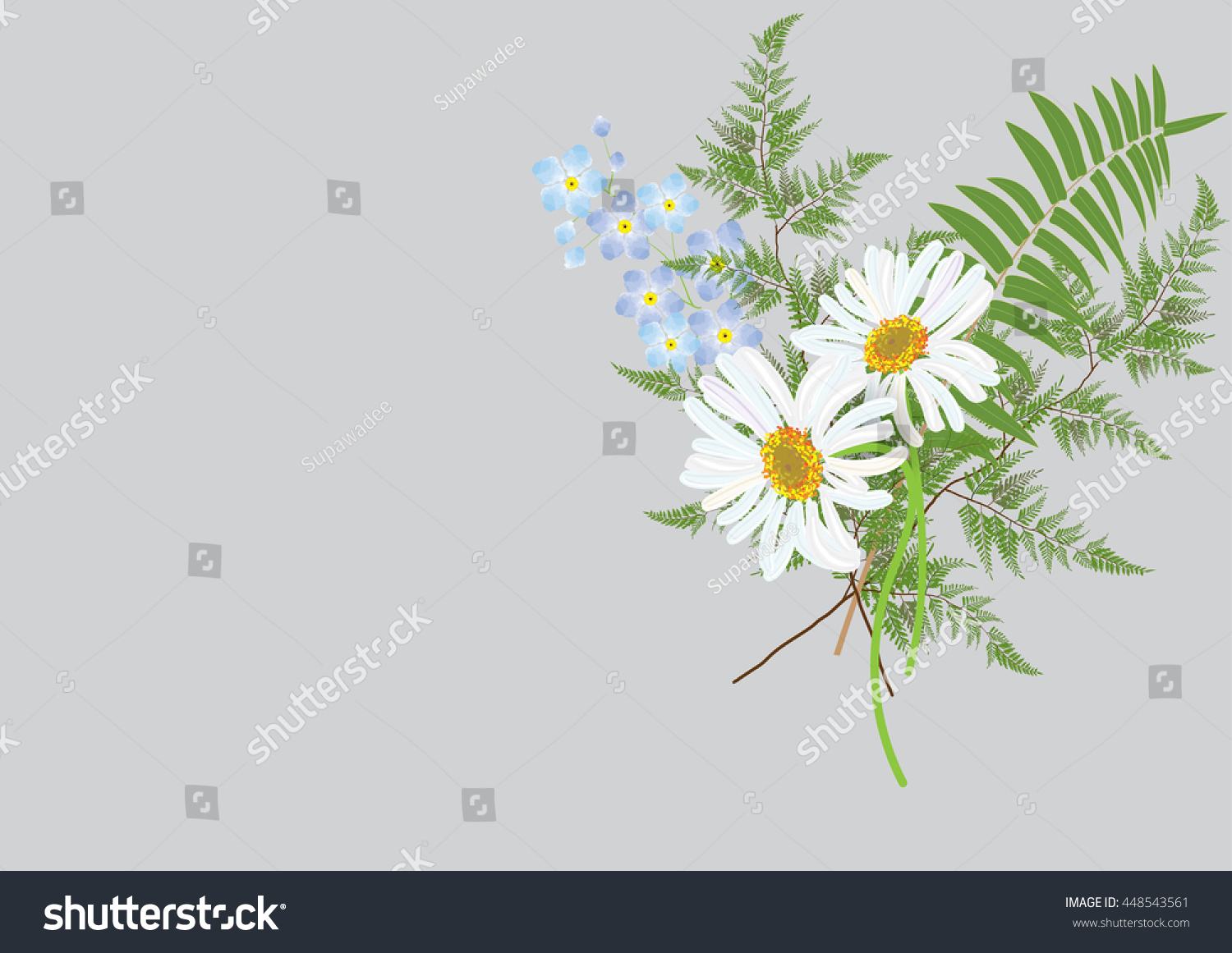 White daisy flowers bouquet fern jasmine stock vector 448543561 white daisy flowers bouquet with fern and jasmine flower isolated picture on background izmirmasajfo Image collections