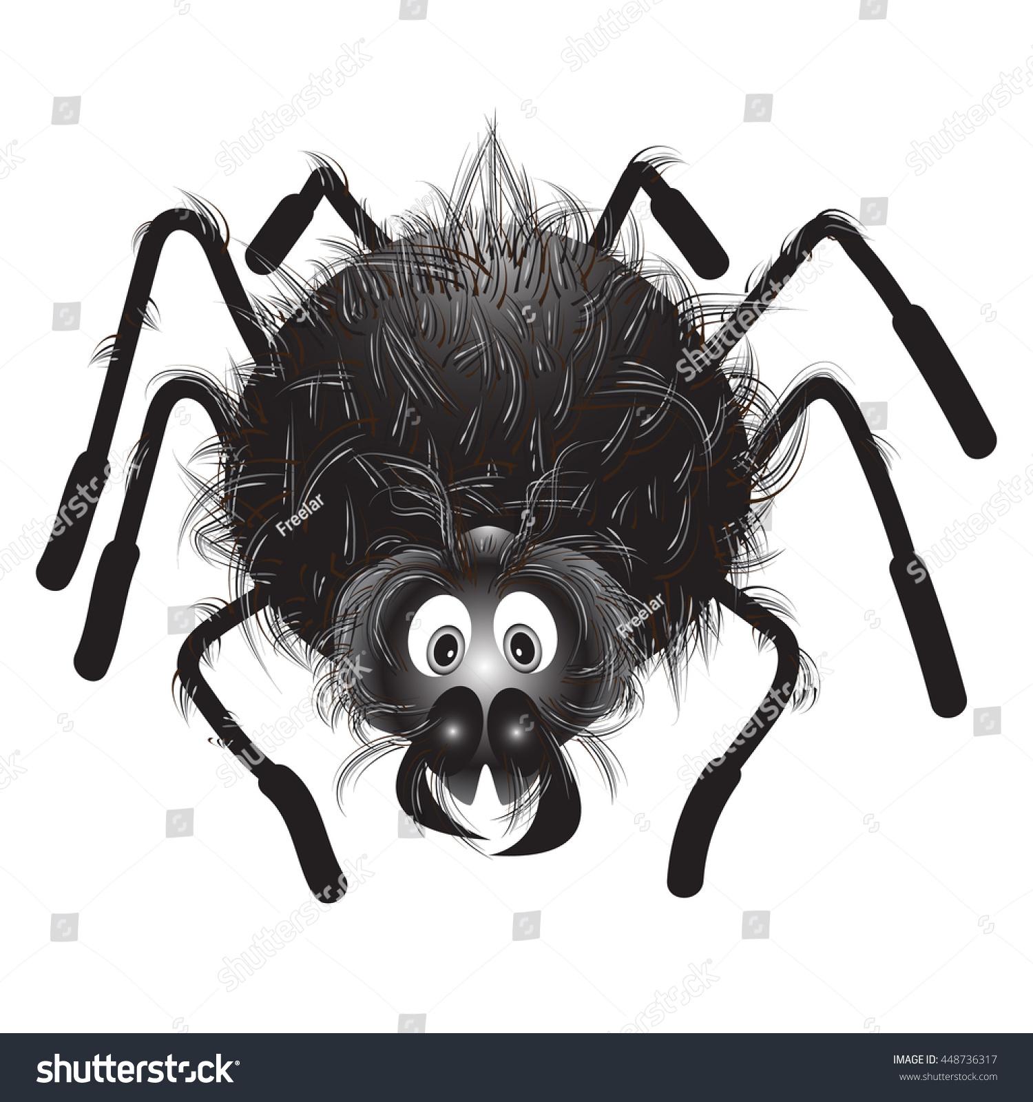 Fuzzy Black Background : Spiderfunny hairy black spider on white stock vector