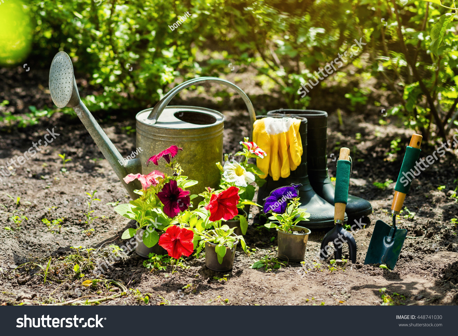 Gardening tools and flowers in the garden watering can for Gardening tools watering