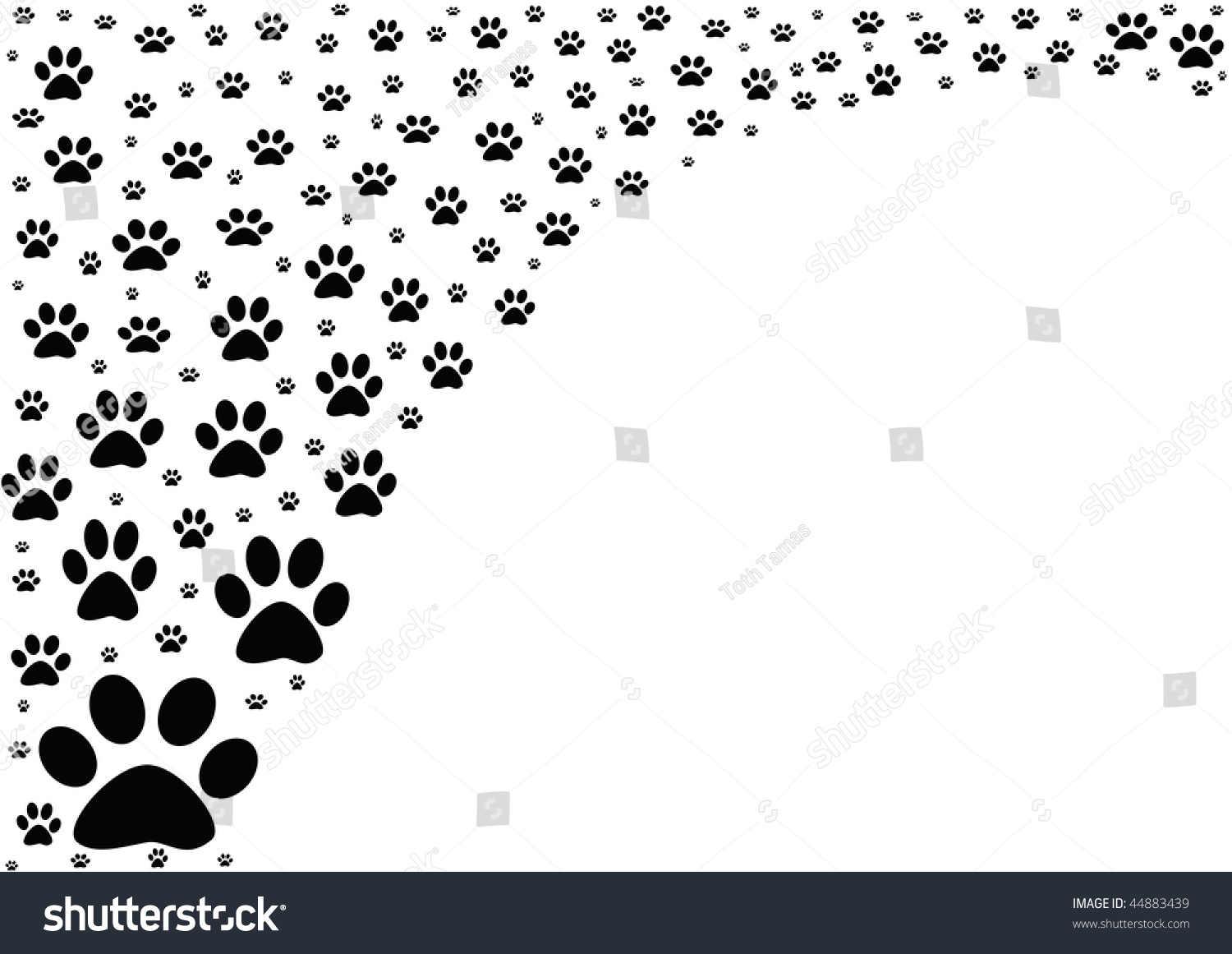Background-Animal Footprints On White Background Stock ...