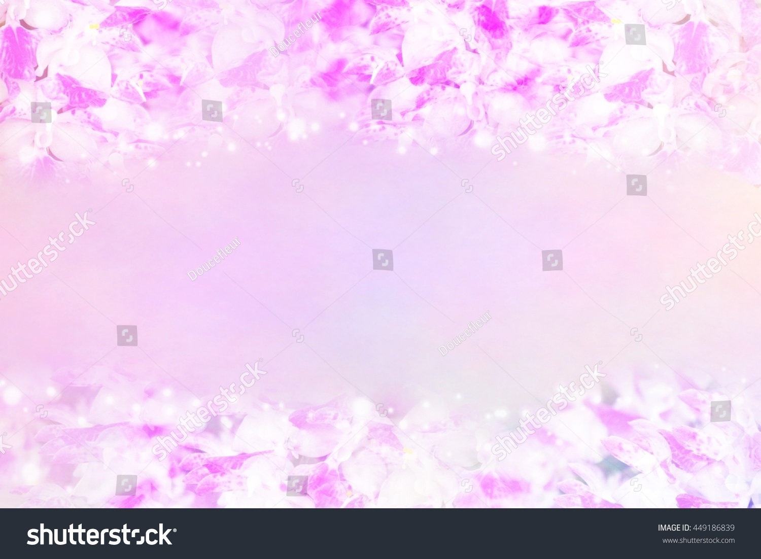 Pink Orchid Flower Border Frame Vintage Stock Photo Edit Now