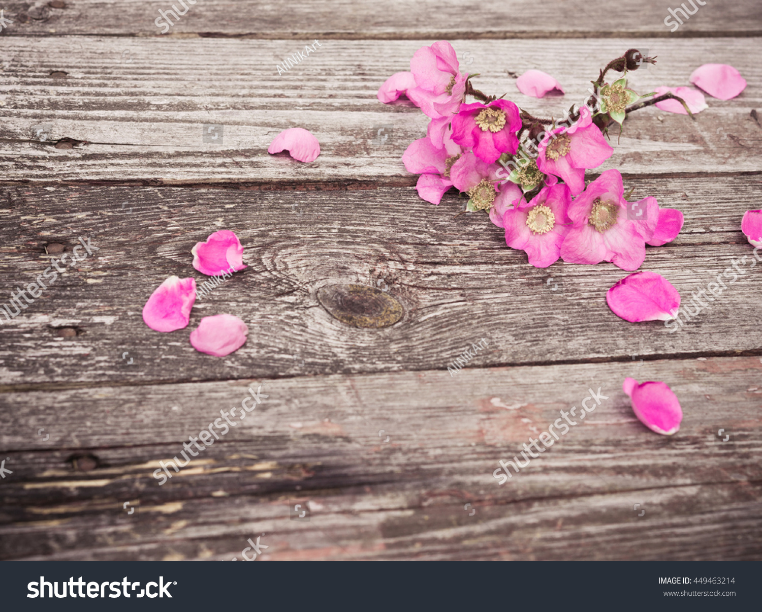 Pink Flowers And Petals On Rustic Old Wooden Table Vintage Floral Background