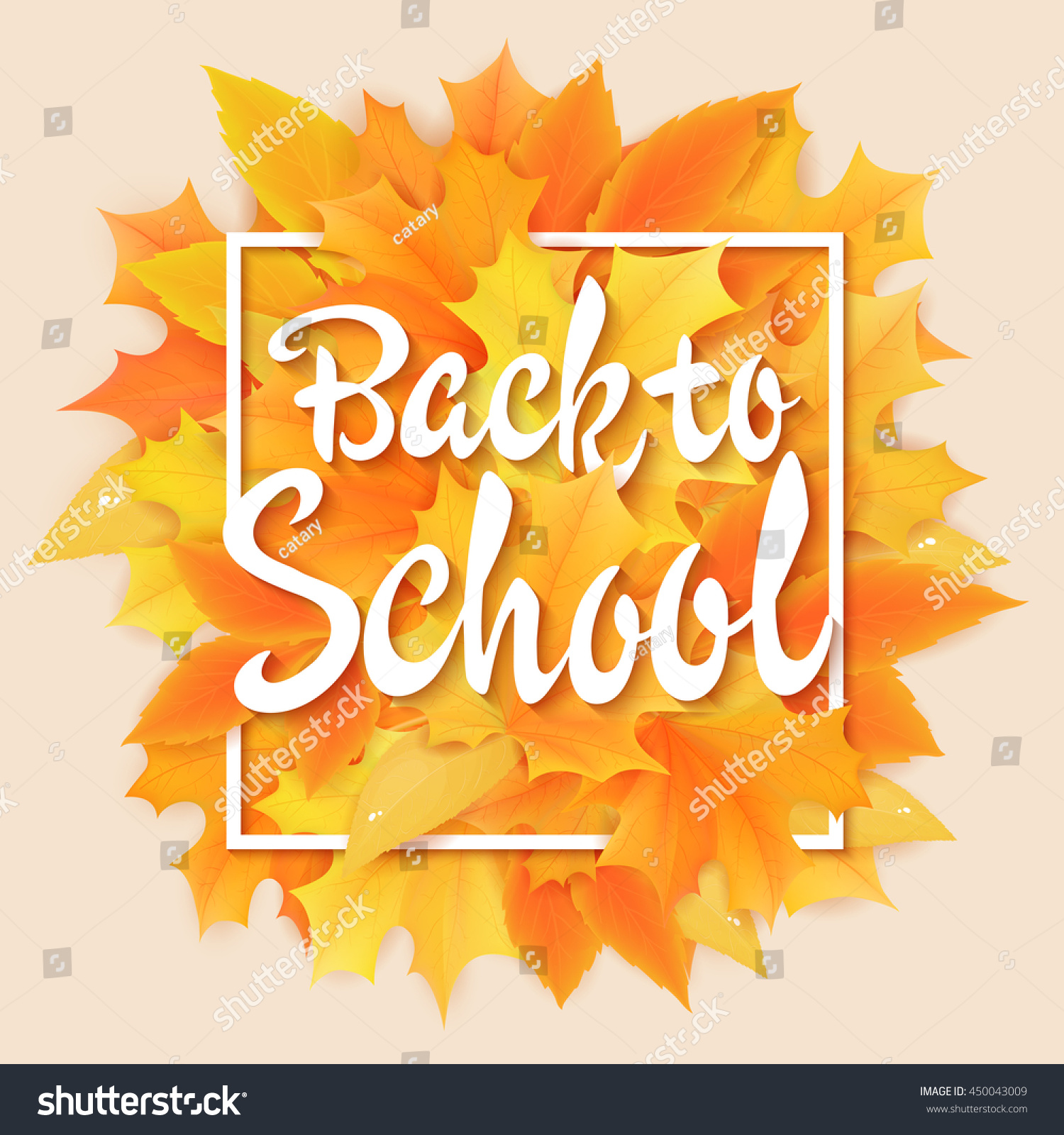 Vector Hand Drawn Back To School Lettering With Frame Realistic