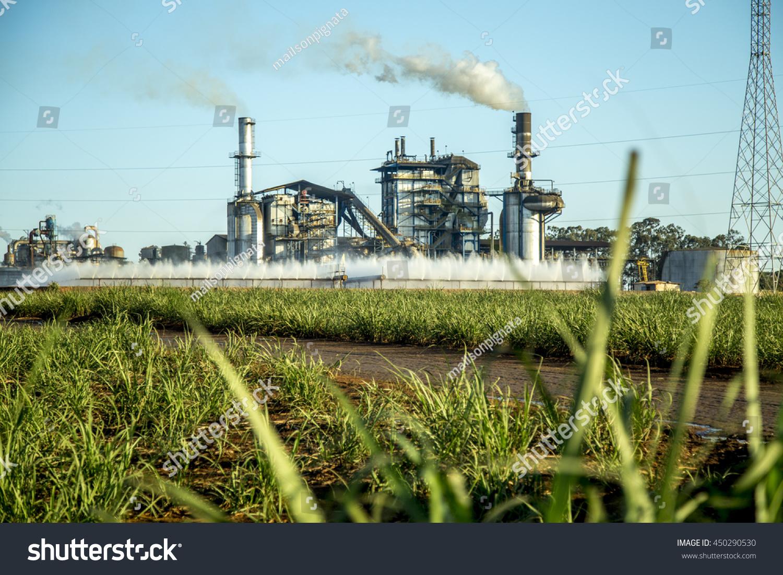 Sugar Cane Factory Stock Photo 450290530 - Shutterstock