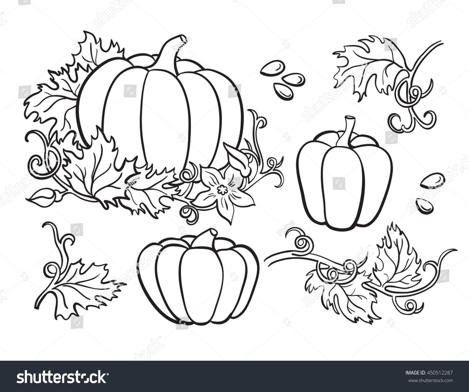 Pumpkin Vector Drawing Set Isolated Outline Stock Vector 450512287 ...