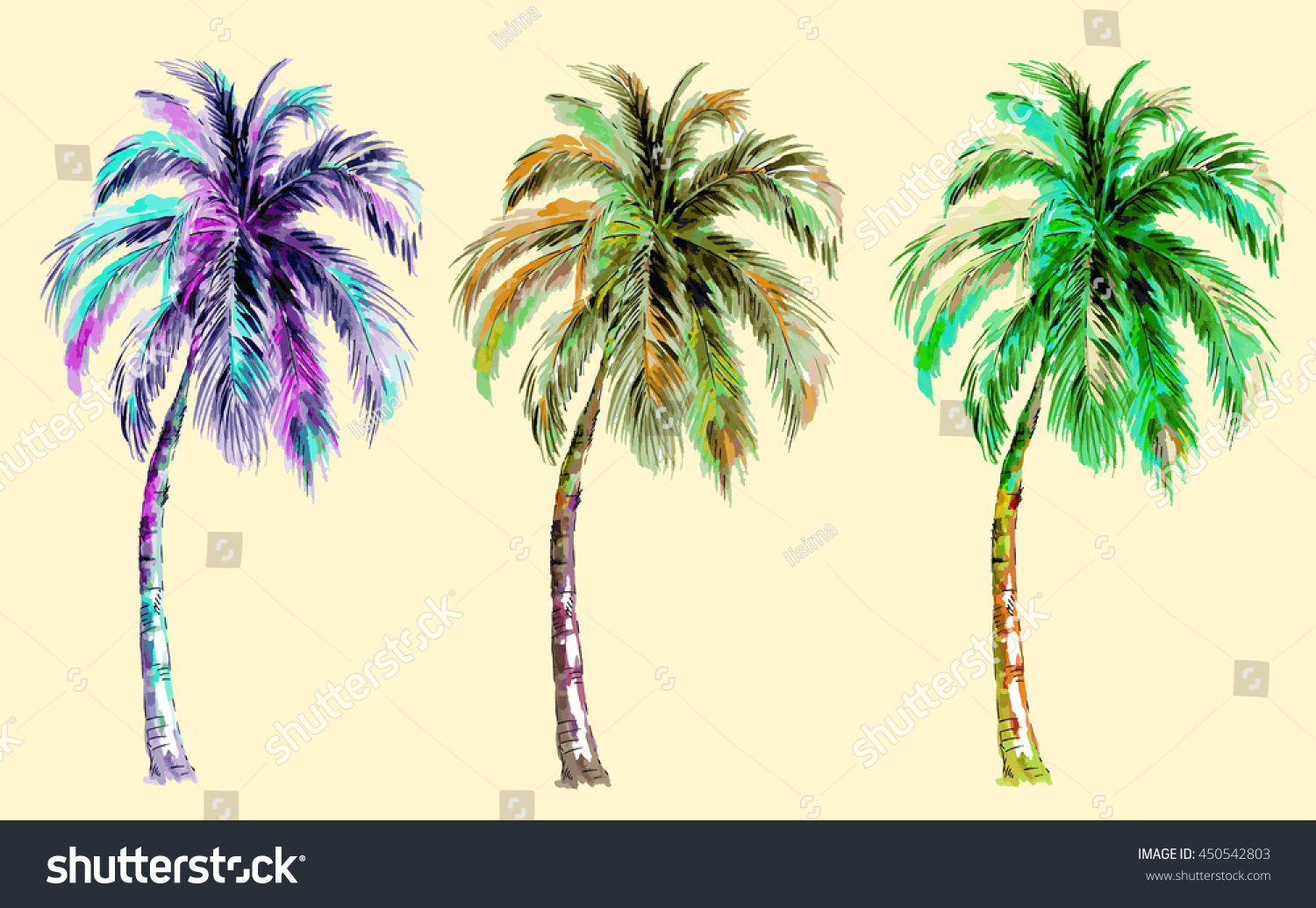 Collection Tropical Palm Trees Watercolor Style Stock Vector ...
