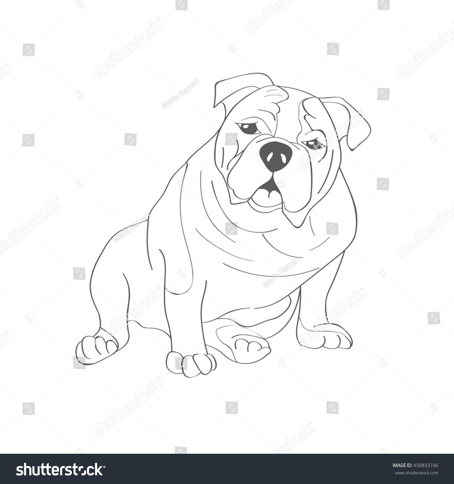 Bulldog Short Hair Breed Dog Favorite Stock Vector Royalty Free
