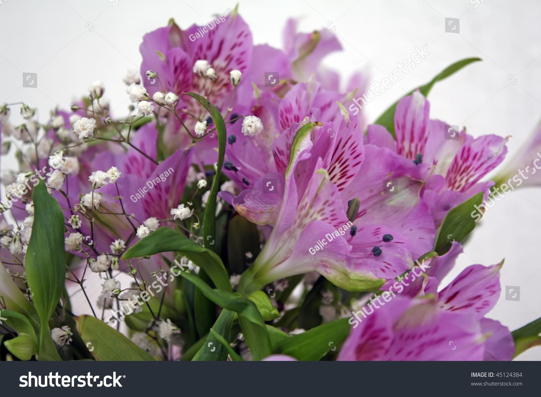 Purple flowers violet flowers iris flower stock photo edit now purple flowers violet flowers iris flower violet flowers bouquet izmirmasajfo