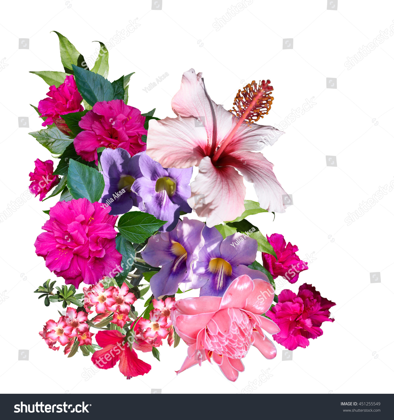 Tropical Flowers Bouquet Isolated On White Stock Photo (Royalty Free ...
