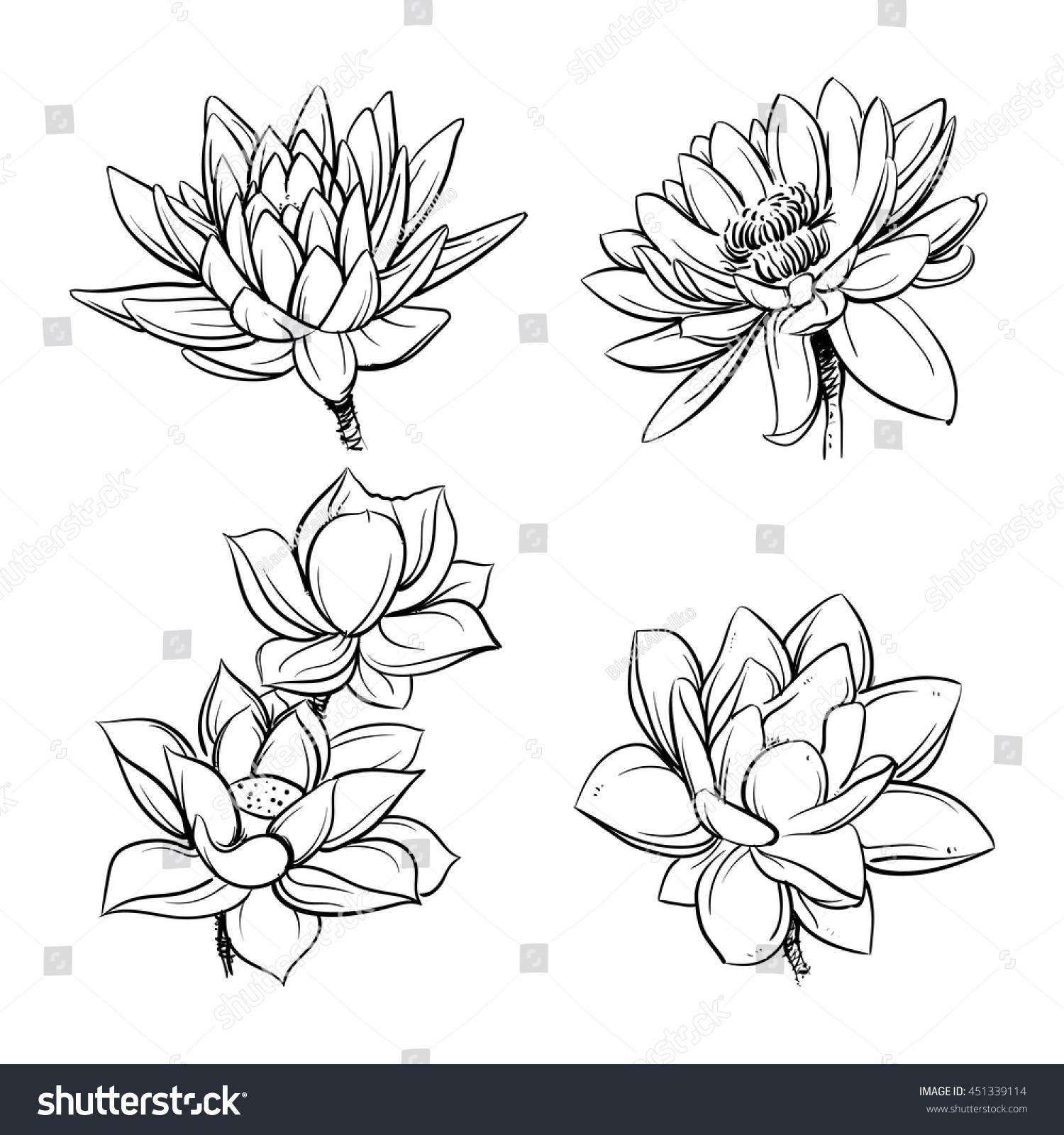 Vector Set Hand Drawn Lotus Flowers Stock Vector Royalty Free