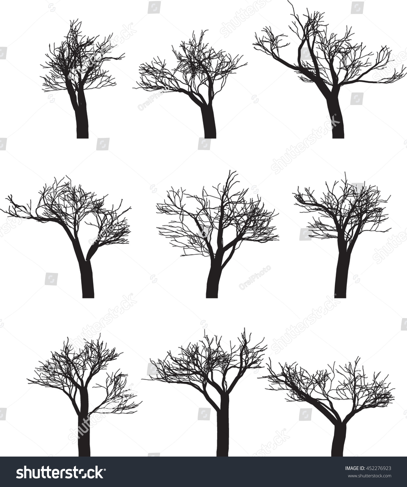 set nine silhouettes trees vector illustration stock vector