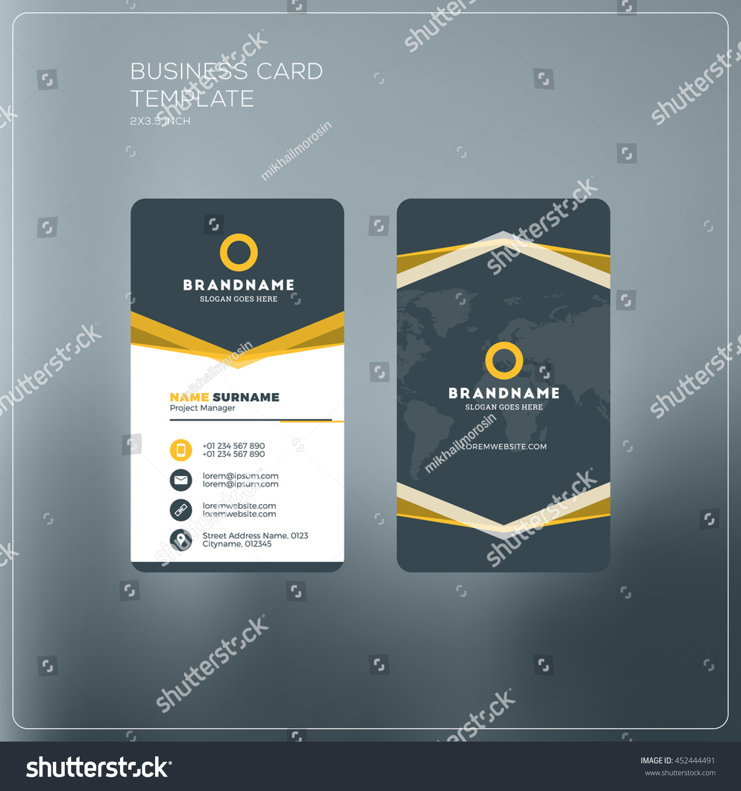 vertical business card template pany logo stock vector