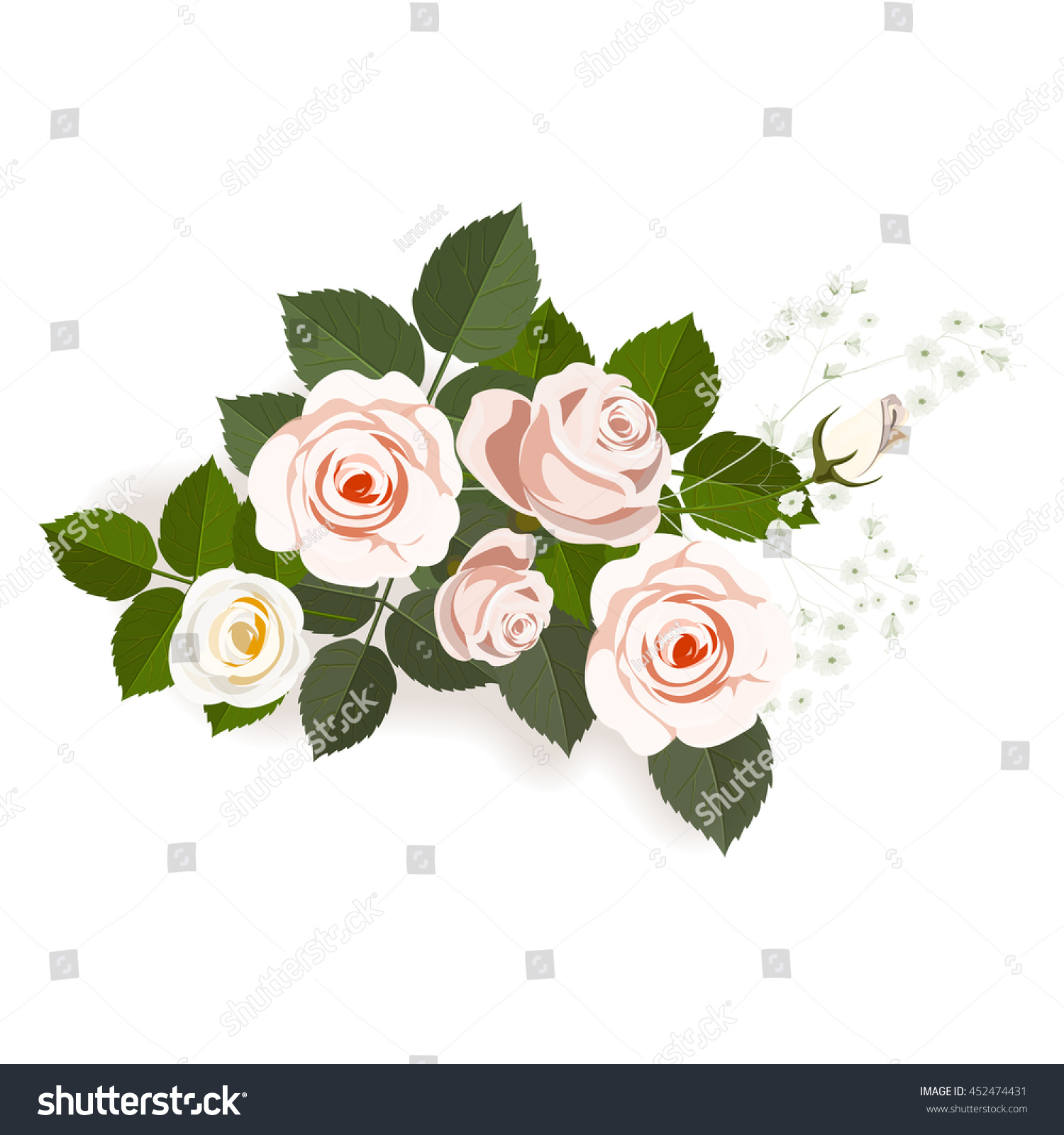 Light Pink Roses Flower Arrangement Isolated Stock Vector Royalty