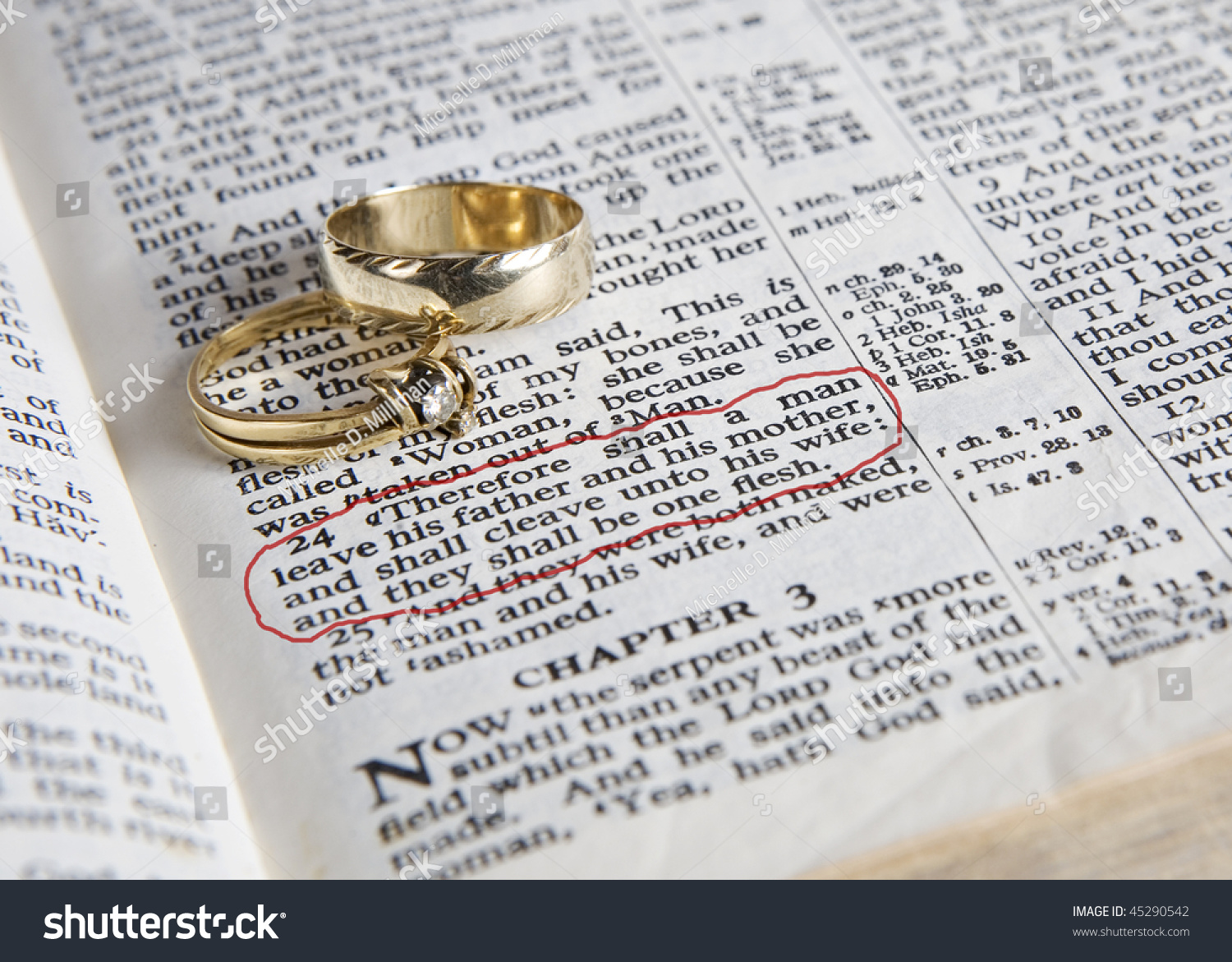 Wedding Rings Place On Open Bible Stock Photo Edit Now 45290542