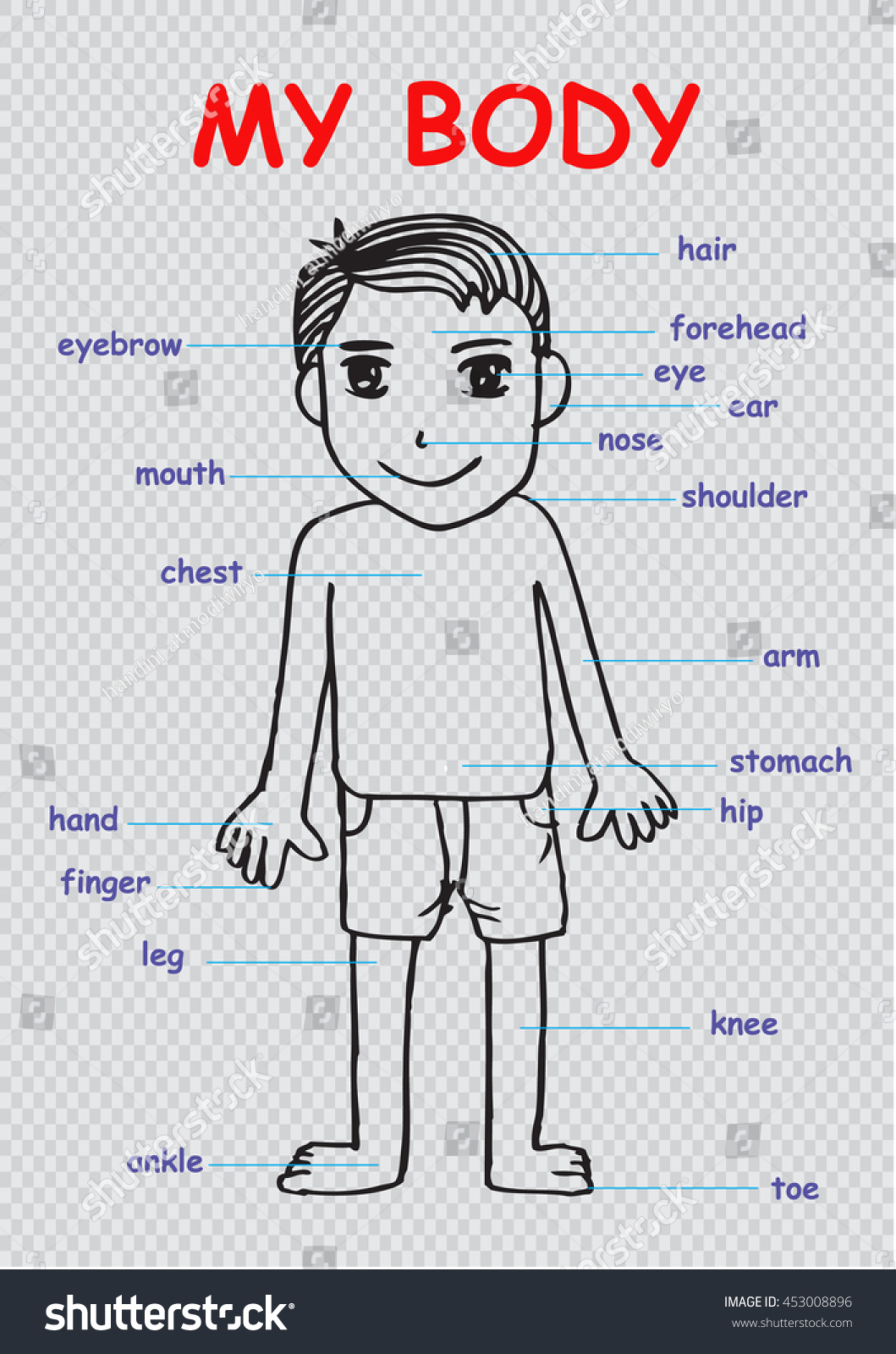 My body educational info graphic chart stock vector 453008896 my body educational info graphic chart for kids showing parts of human body of nvjuhfo Choice Image