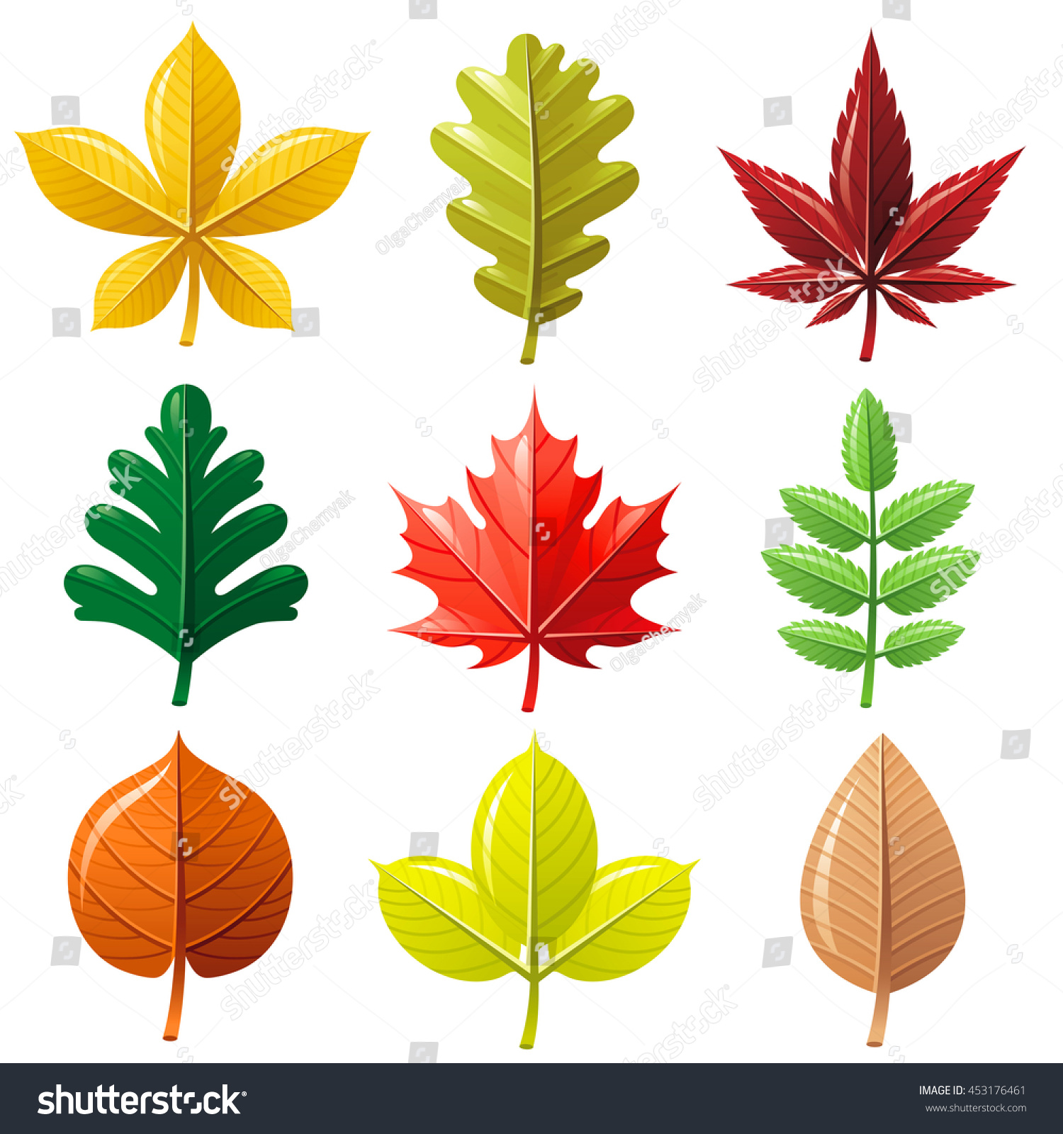 Leaf vector icon set natural seasonal stock vector 453176461 leaf vector icon set for natural seasonal ecological design concept abstract autumn leaf biocorpaavc Choice Image