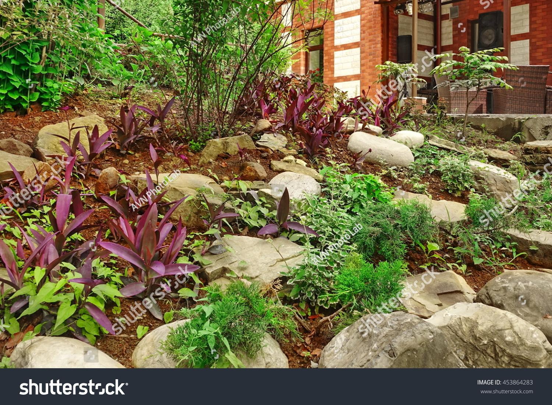 ornamental backyard garden small hill tropical stock photo
