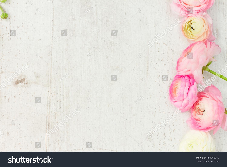 Pink White Ranunculus Flowers Border On Stock Photo Edit Now