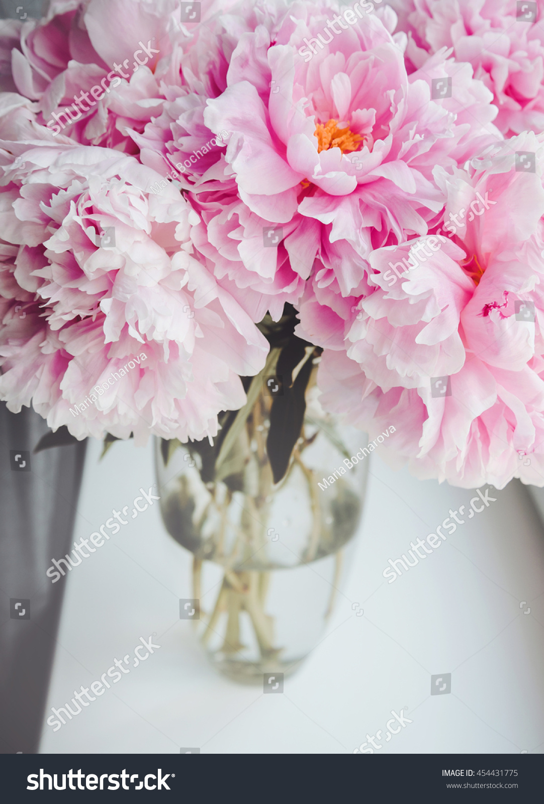 Beautiful bouquet pink peonies peony flowers stock photo 454431775 beautiful bouquet of pink peonies peony flowers in vase on white window sill pastel dhlflorist Images