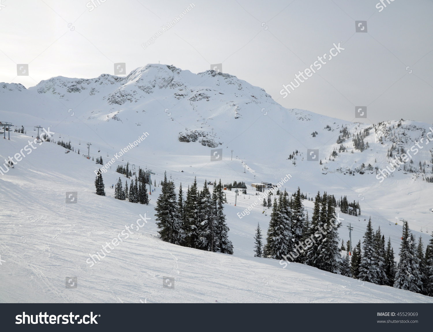 """Schedule&Cost Management— for """"Whistler Ski Resort Project"""""""
