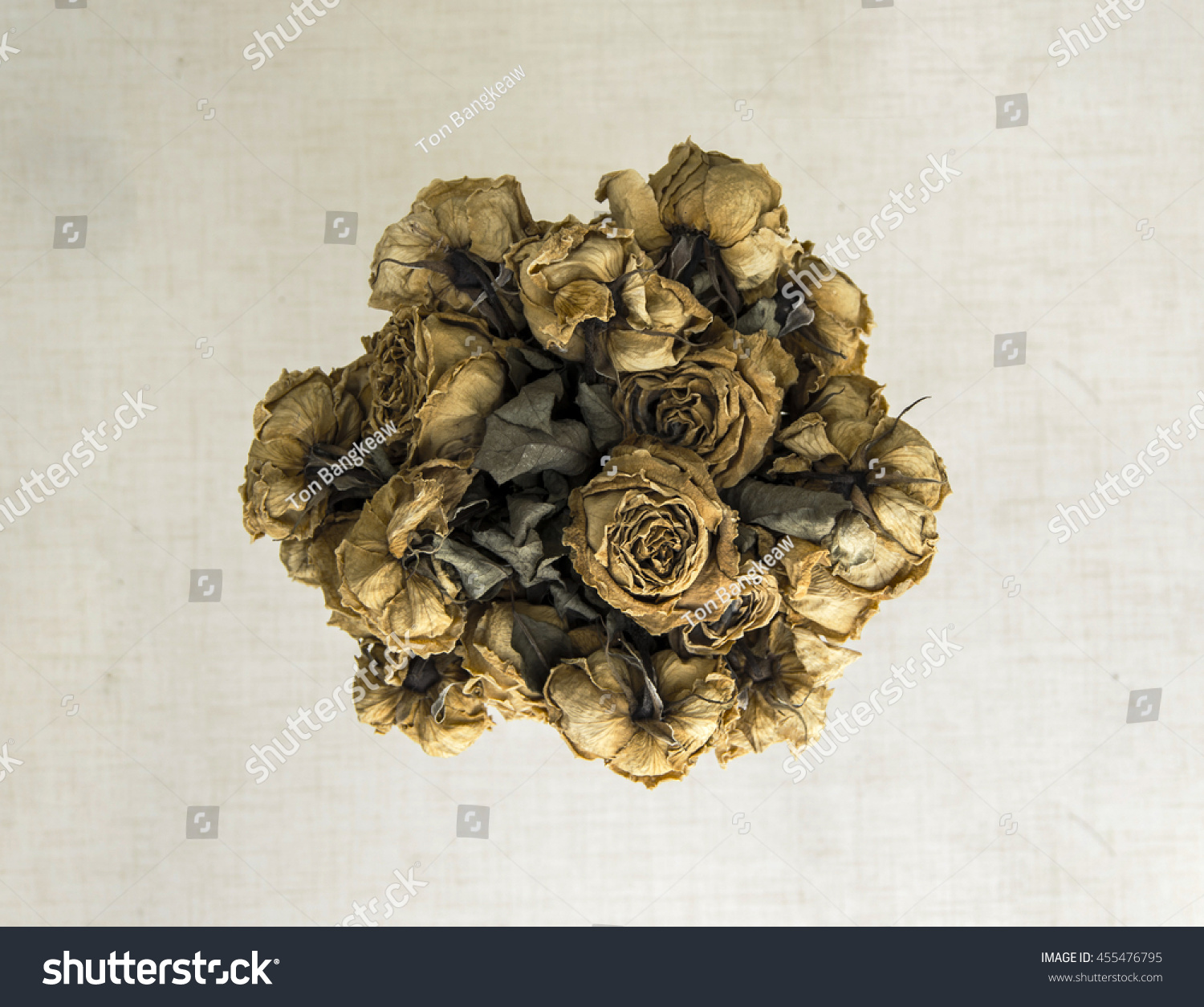 Dead Bouquet Roses Wither Dry Stock Photo Edit Now 455476795