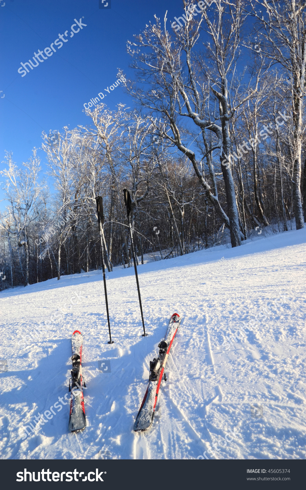 Snow Clad Skis Poles Top Ski Stock Photo 45605374