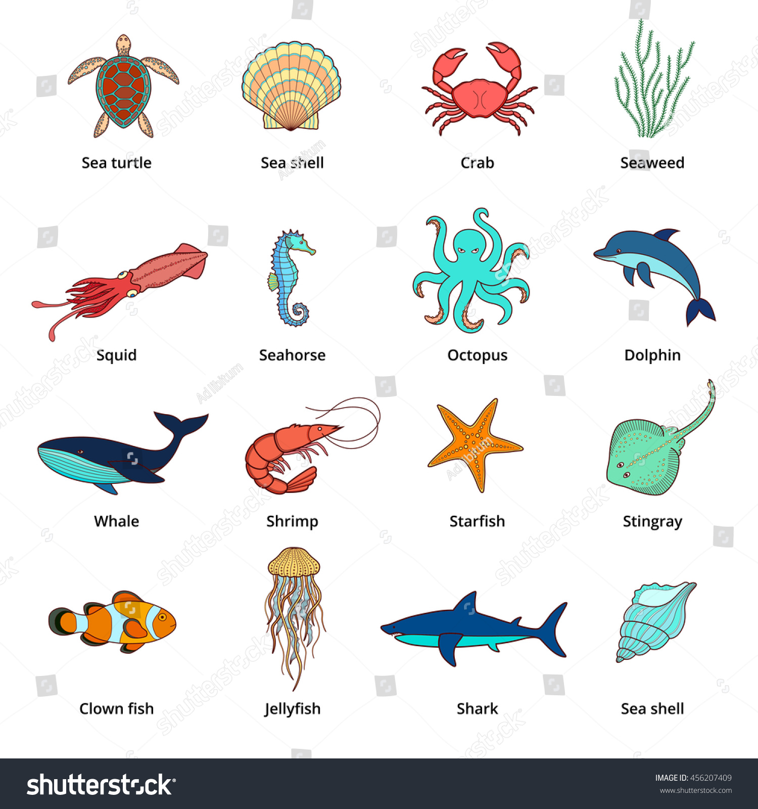 Sea Animals Sea Turtle Seashell Sea Stock Vector 456207409 ...