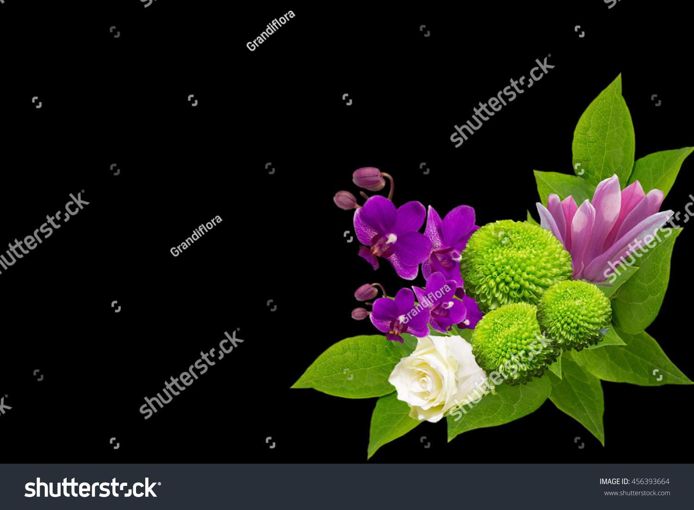 Beautyfull Flowers Green Chrisantemum Roze Orhidgreeting Stock Photo