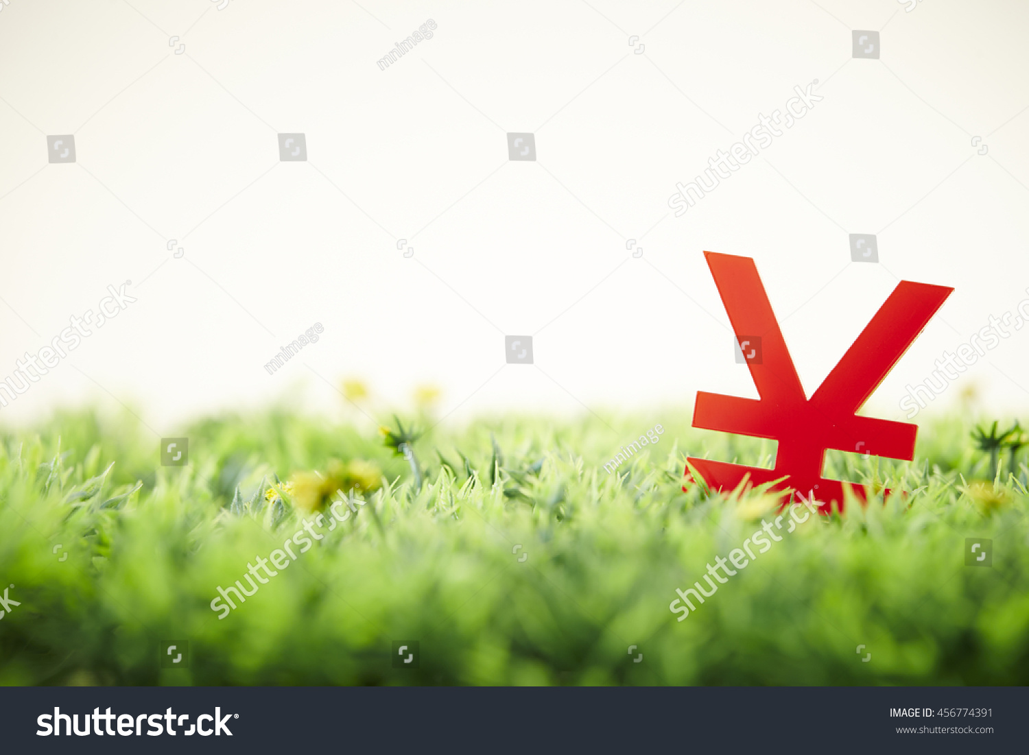 Chinese rmbjapanese yen currency symbol stock photo 456774391 chinese rmbjapanese yen currency symbol buycottarizona Gallery