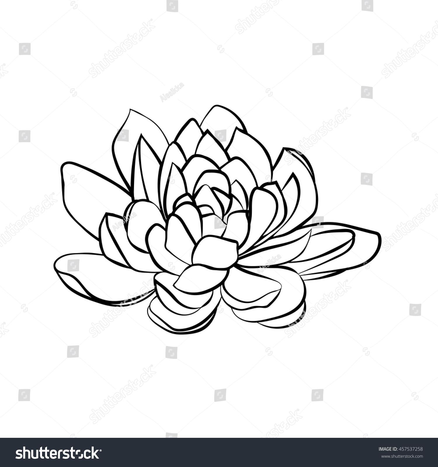Lotus Flowers Icon Black Line Drawn Stock Vector 457537258