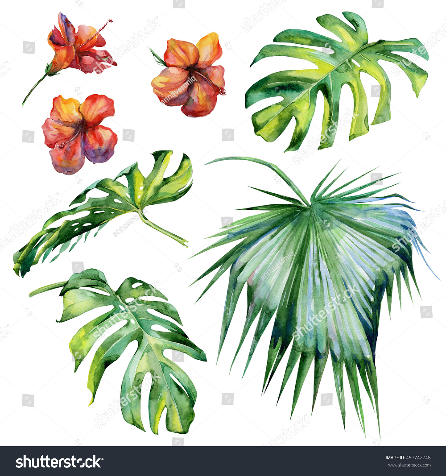 Watercolor illustration set of tropical leaves dense jungle Hand painted Banner with tropic summertime motif may be used as background texture wrapping paper textile or wallpaper design