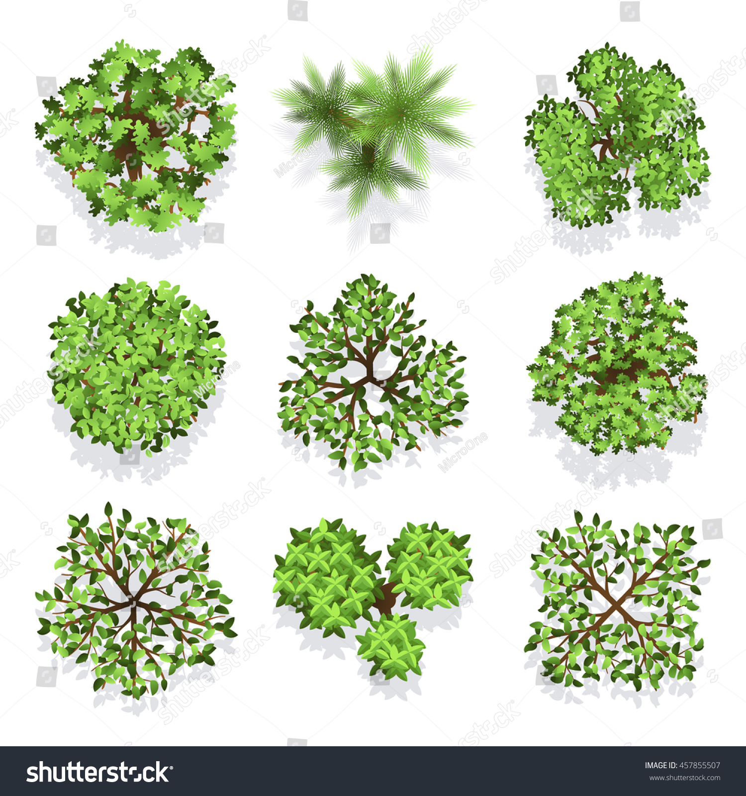 Plant top view vector in group download free vector art stock - Trees Top View Vector Set For Landscape Design And Map Green Tree For Garden