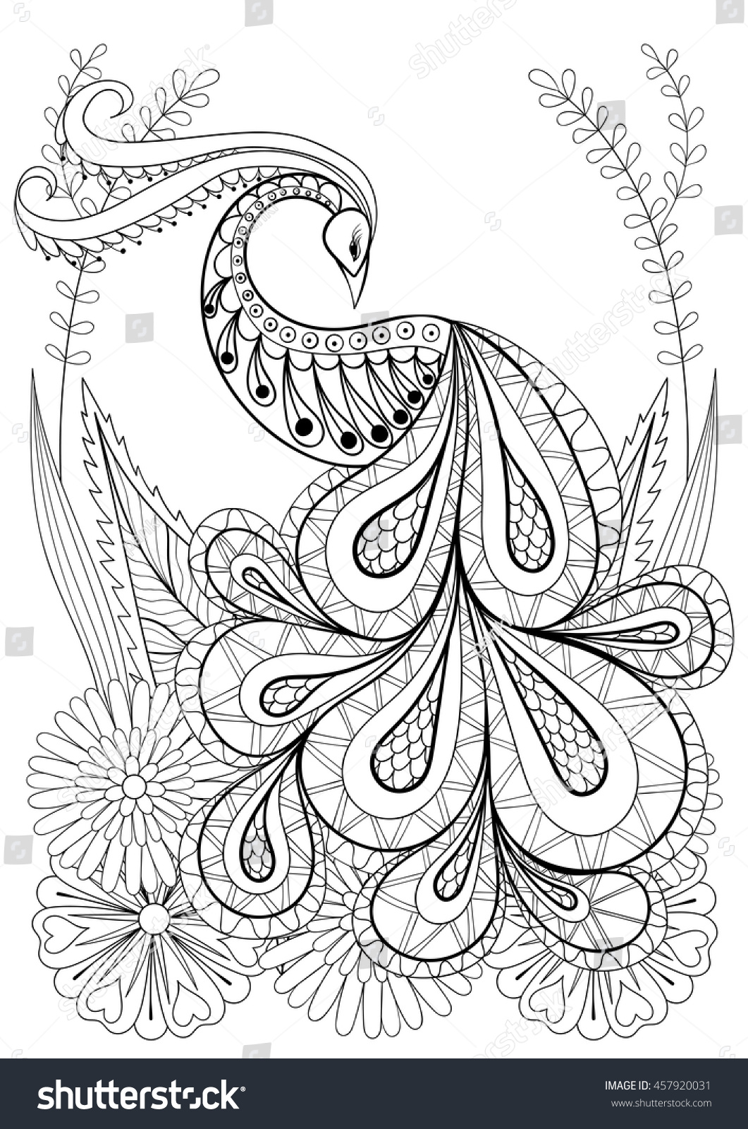 zentangle stylized peacock flowers hand drawn stock vector