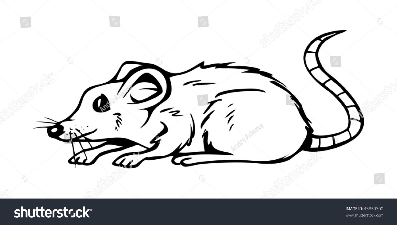 Line Drawing Rat : Cartoon vector outline illustration rat stock