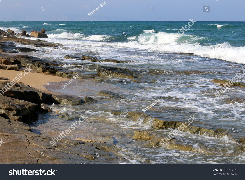 shore of the Mediterranean Sea #459250255
