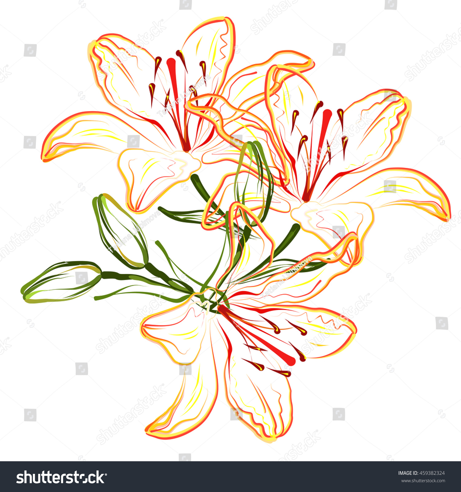 Orange lily hand drawn stylized color stock photo photo vector orange lily hand drawn stylized color vector brush sketch of lily flowers for greeting cards izmirmasajfo Choice Image
