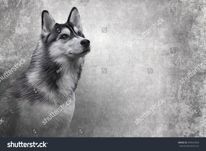 royalty free drawing siberian husky dog portrait 459531829 stock