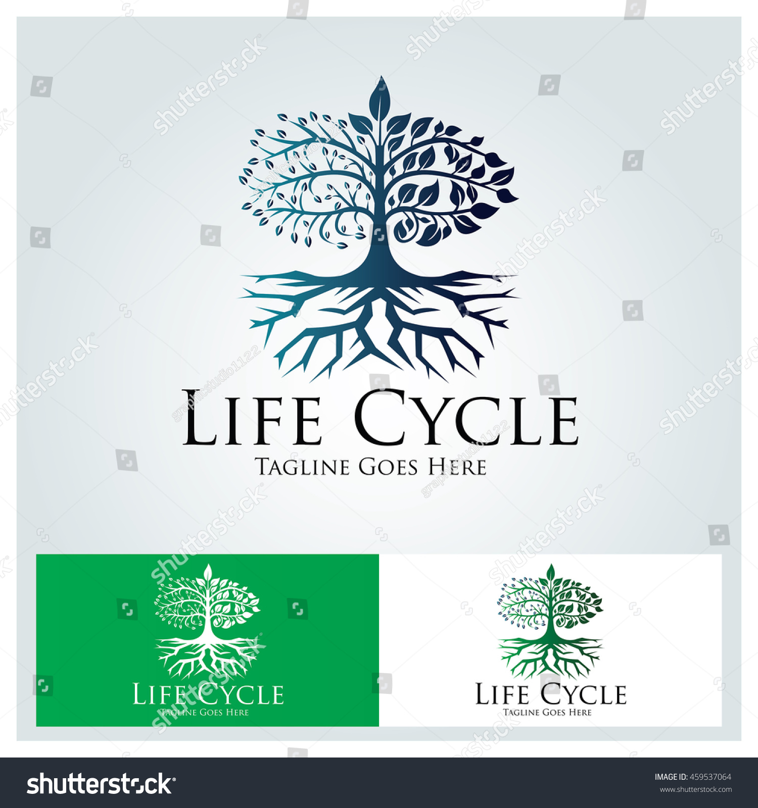 life cycle template