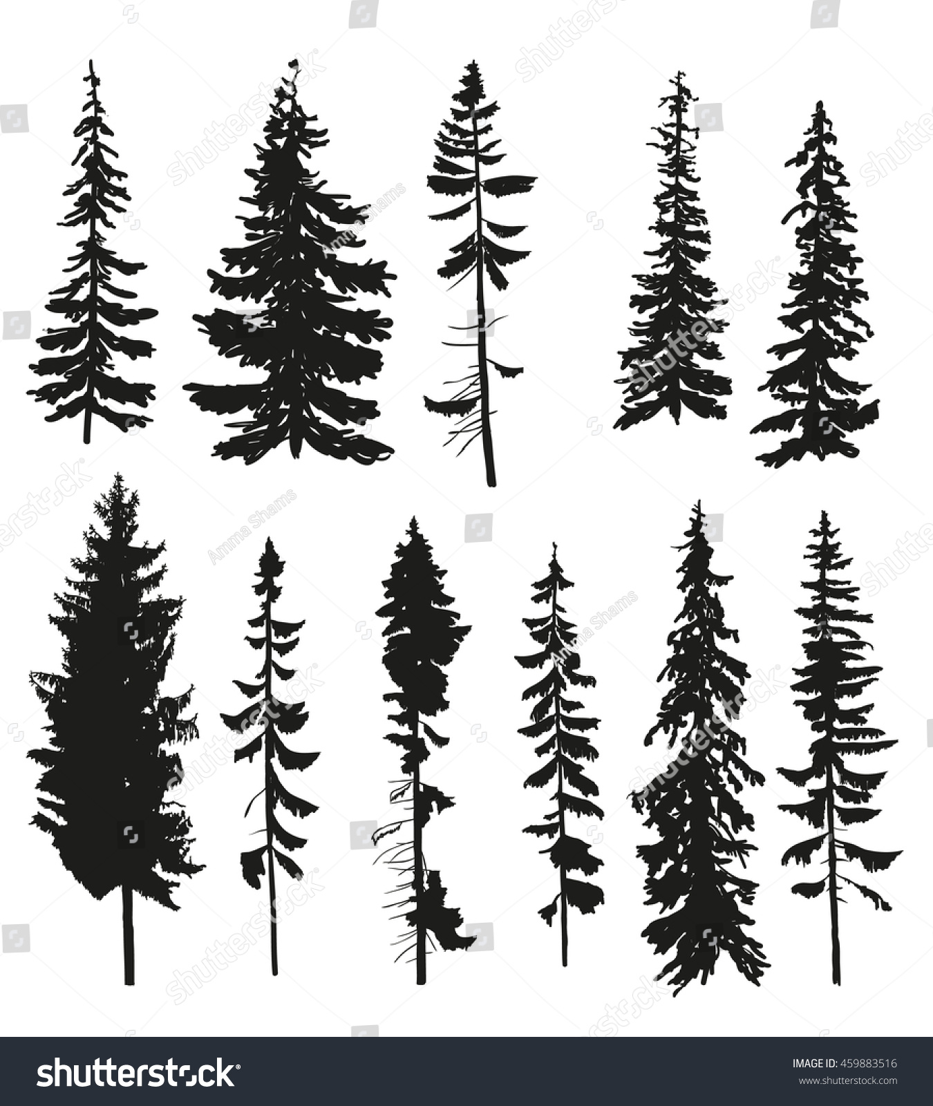 Stock Vector Vector Silhouettes Of Different Pine Trees on Simple Pine Tree Clip Art