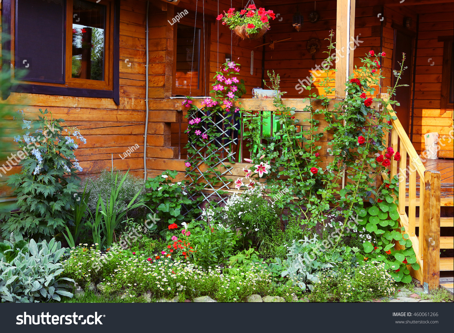 Beautiful garden flowers bushes on cottage stock photo edit now beautiful garden with flowers bushes on the cottage wooden house porch with hand flower basket background izmirmasajfo