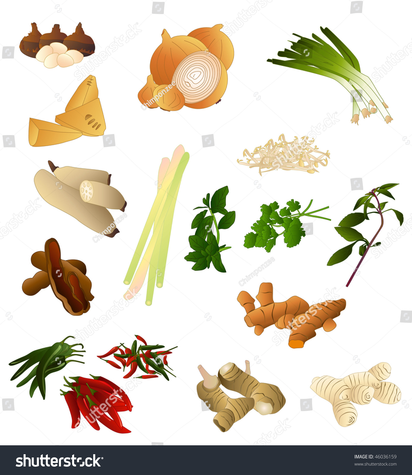 Asian Spices And Herbs 60