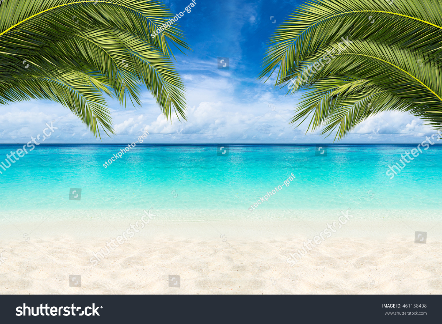 paradise beach background with coco palms