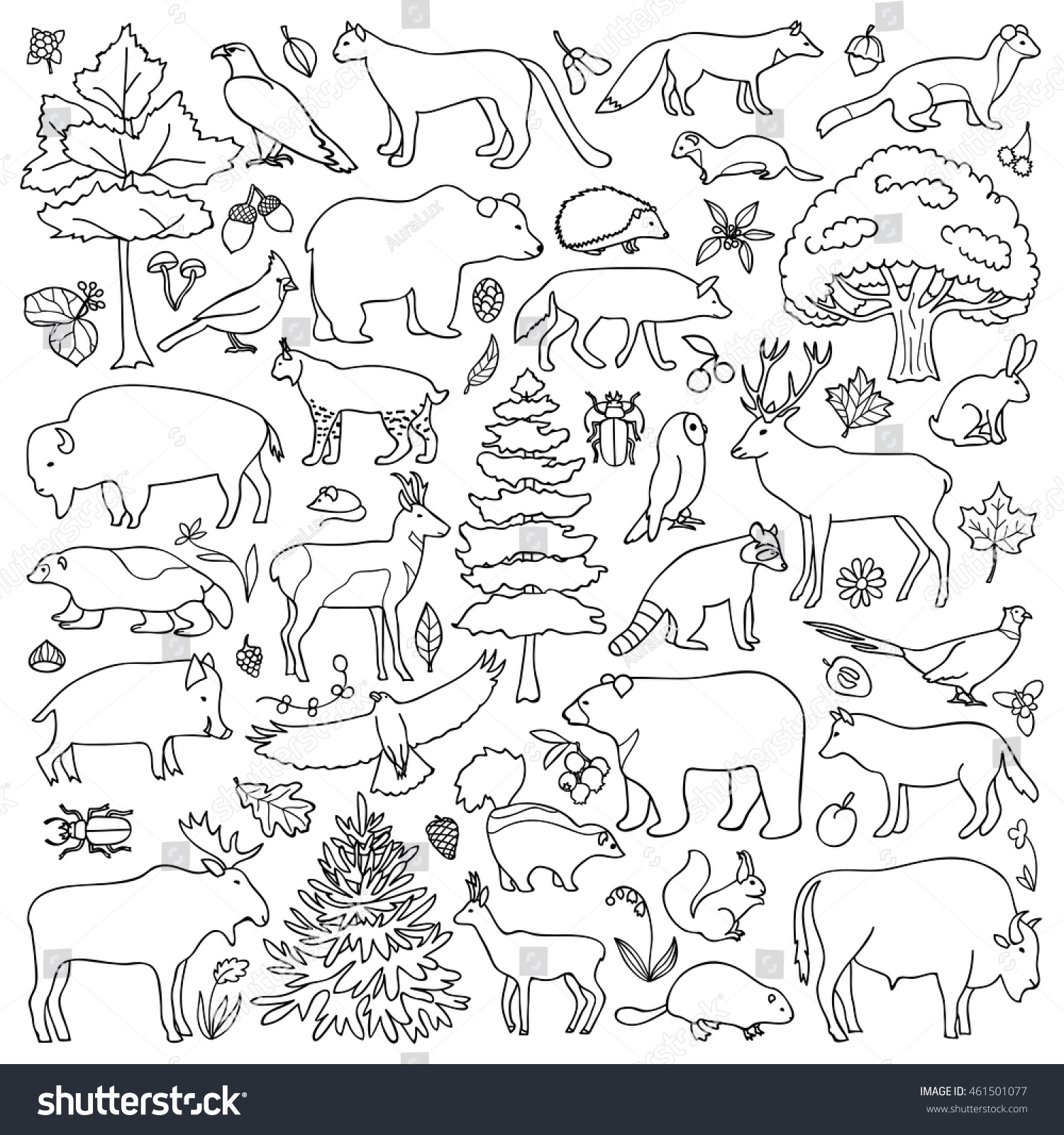 Doodle Forest Animals Plants Coloring Page Stock Vector
