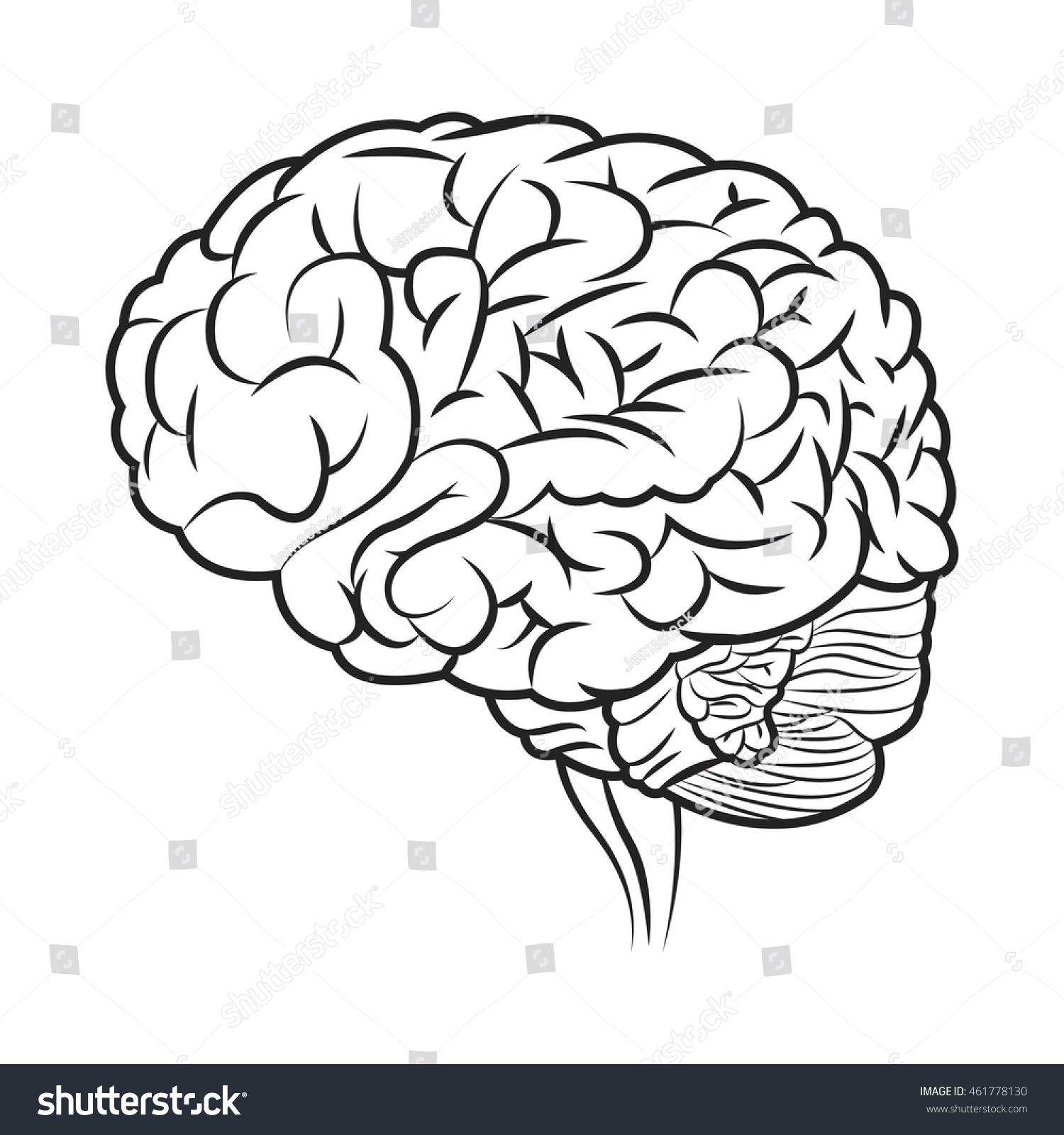 flat brain icon - photo #32