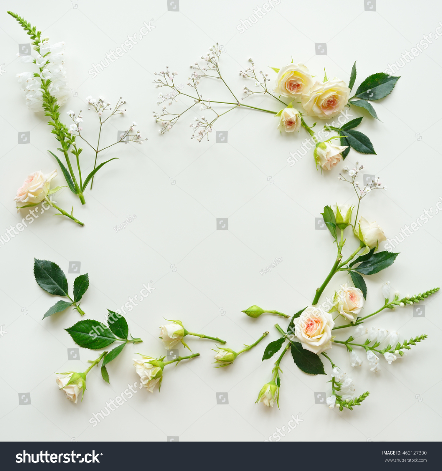 Assorted roses heads on white background stock photo 462127300 assorted roses heads on white background flowers and leaves scattered on a table overhead dhlflorist Image collections